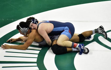 Flaherty Pins Down 6th Place At State