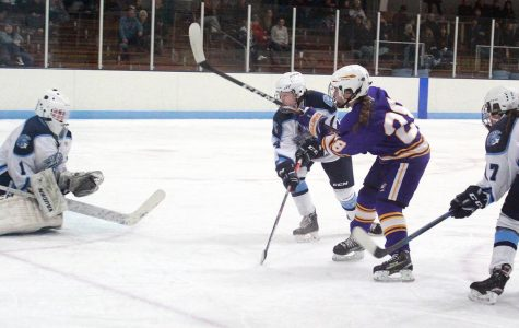 Spartans cut down by  Lumberjacks