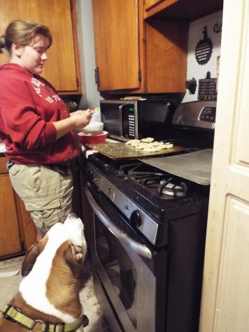 Armella Lane shapes dog treats and places them on the baking pan while Copper her American Bulldog begs for another treat at home May 5.