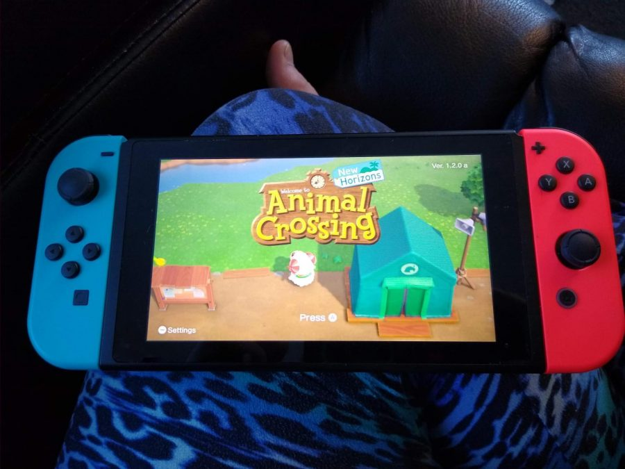 In this photo, Animal Crossing New Horizon is featured on the Nintendo Switch.
